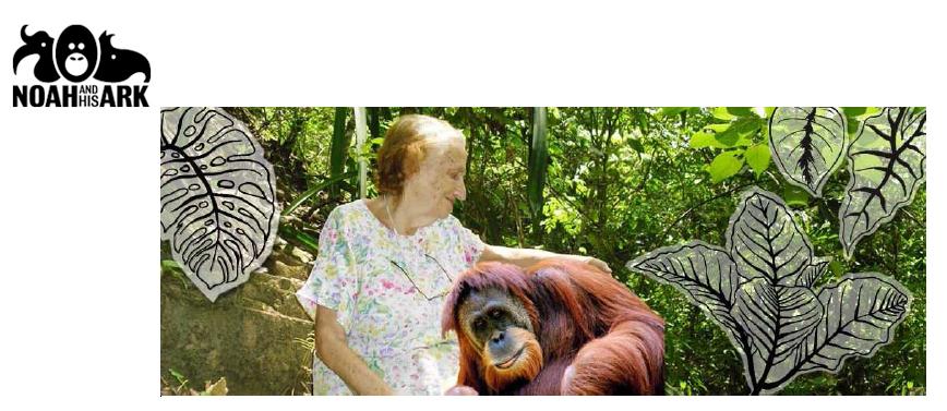 L'engagement n'a pas d'âge : FRANCINE NEAGO, 85 ans toujours dans l'action pour les Orangs-outans