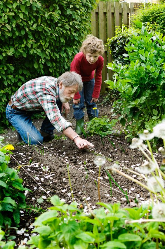 Les Jardins Thérapeutiques en EHPAD