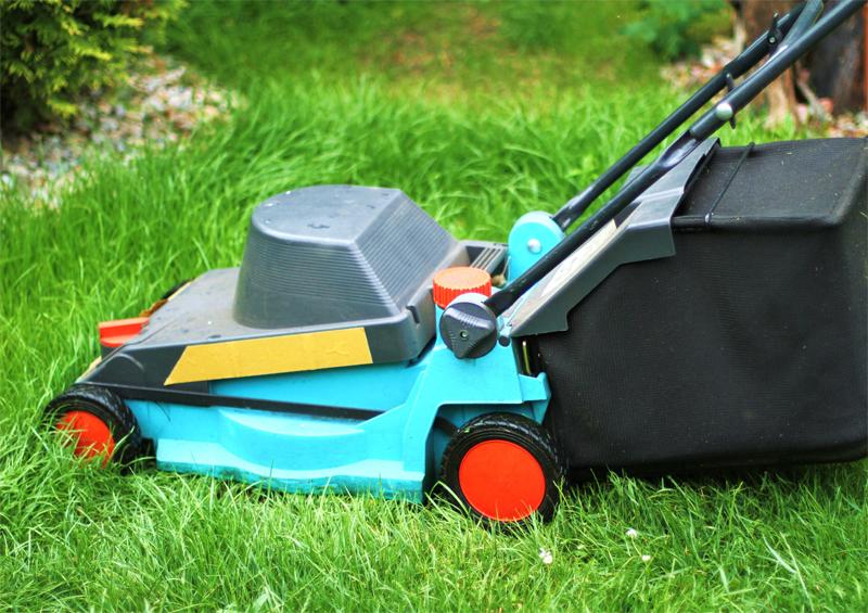 M tiers dans le domaine des maisons de retraite for Emploi service jardinage