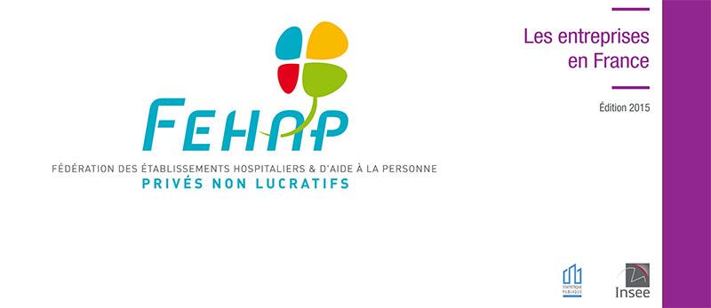 La FEHAP commente le rapport 2015 de l'INSEE sur « les entreprises en France »