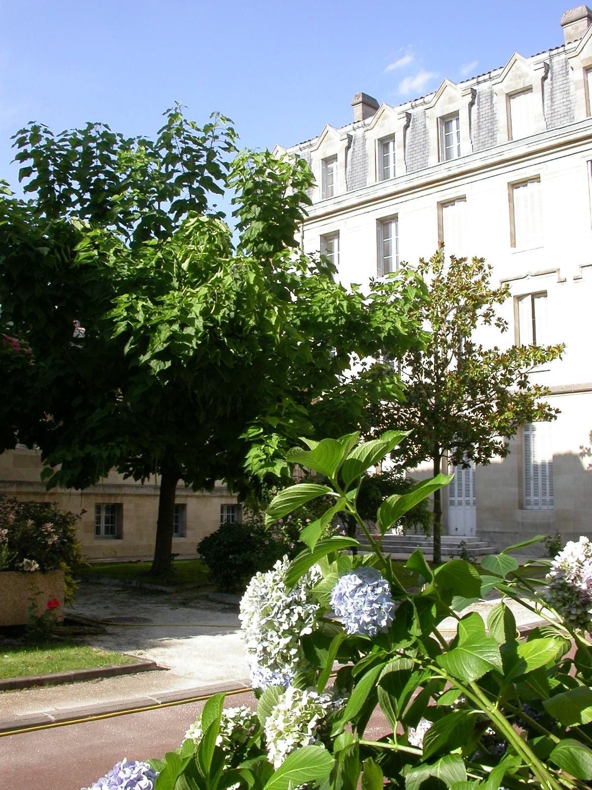 Tarif Restauration Senior Bordeaux
